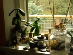 Window sill world